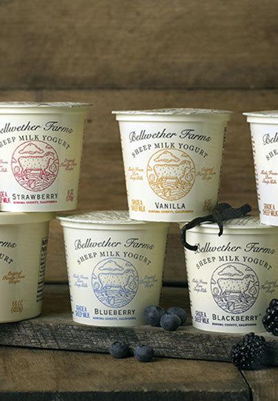 Bellwether Farms Sheep Yogurt 12 count - Blackberry